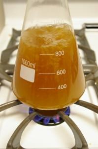boiling starter wort