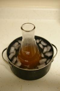 cooling starter wort